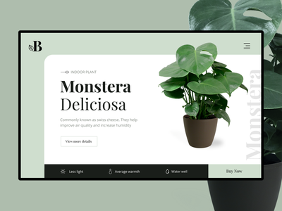 Product detail page monstera deliciosa monstera green plants app plants leafs leaf dual color website design colour cards card layout landing page ui