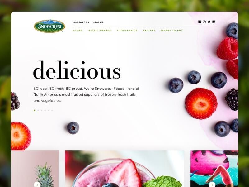 Snowcrest Website Design web design ux ui