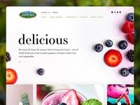 Snowcrest Website Design