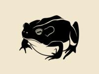Dark Toad