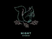 Night Studio: Prepare