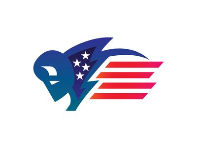 American Bison city of light illustrator american flag america buffalo bison logo buffalo ny