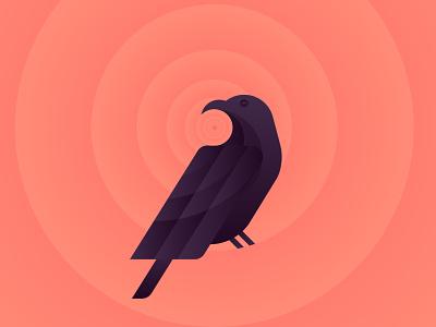 Raven goldenratio spooky dark illustraion bird