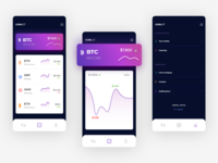 Crypto Coin Tracking App clean uxui ux app crypto coin