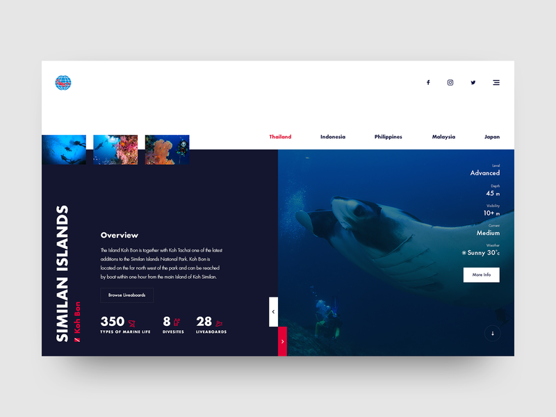 PADI UI Concept water underwater color blue recreation activity outdoor sport diving travel ui design website