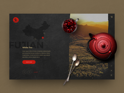 Teahouse White Tea Concept