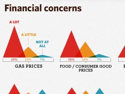 Financial Concerns Detail infographic triangle chart dataviz dashboard