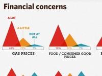 Financial Concerns Detail
