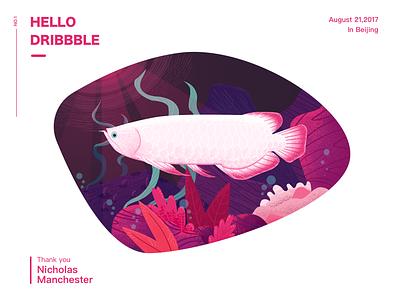 Hello Dribbble light water plants dribbble pink fish illustration arowana