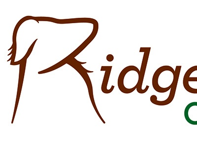 Dog Kennel logo logo dog illustrator