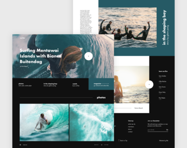 Surfer Website