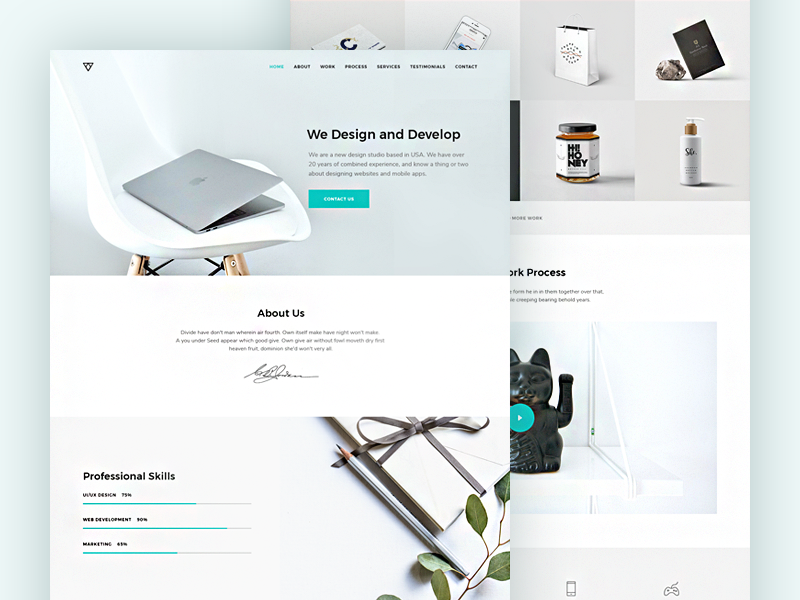 Free psd portfolio template by svetlana dribbble preview 800x600 maxwellsz