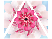 Kaleidoscope Cherry Blossom