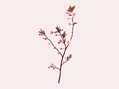 Spring 🌸 adobe pink season plant flower spring illustrator