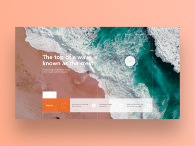Natural Roundups web desgin columns home homepage design sea blog user experience ux user interface ui