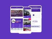 car installment & service