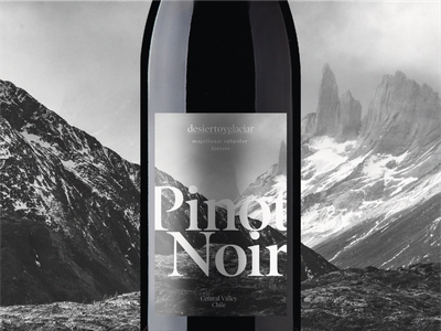 Desierto y Glaciar packaging logo design label graphic design illustration branding black  white photography wine label design wine labels wine label mockup label design wine label