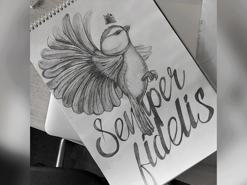 Semper Fidelis sketch 2 fly wings latin paint draw pencil sketchbook artwork art life bird drawing sketch