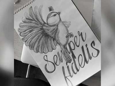 Semper Fidelis sketch 2 fly wings latin paint draw pencil sketchbook artwork art life bird drawing sketch