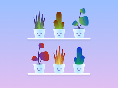 Happy Plants shelf succulent pot cactus plants