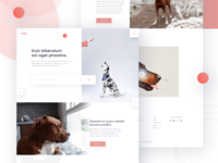 Dogi- Home page
