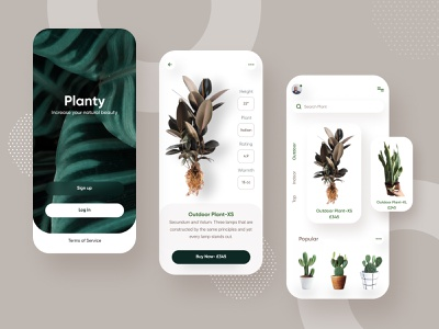 Plant Shop application sass mobile flat design carddesign card food plantapp plantshop appsdesign icon branding vector product e-commerce agency ux web minimal typography