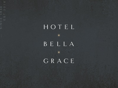 Hotel Bella Grace charleston boutique hotel star typography branding