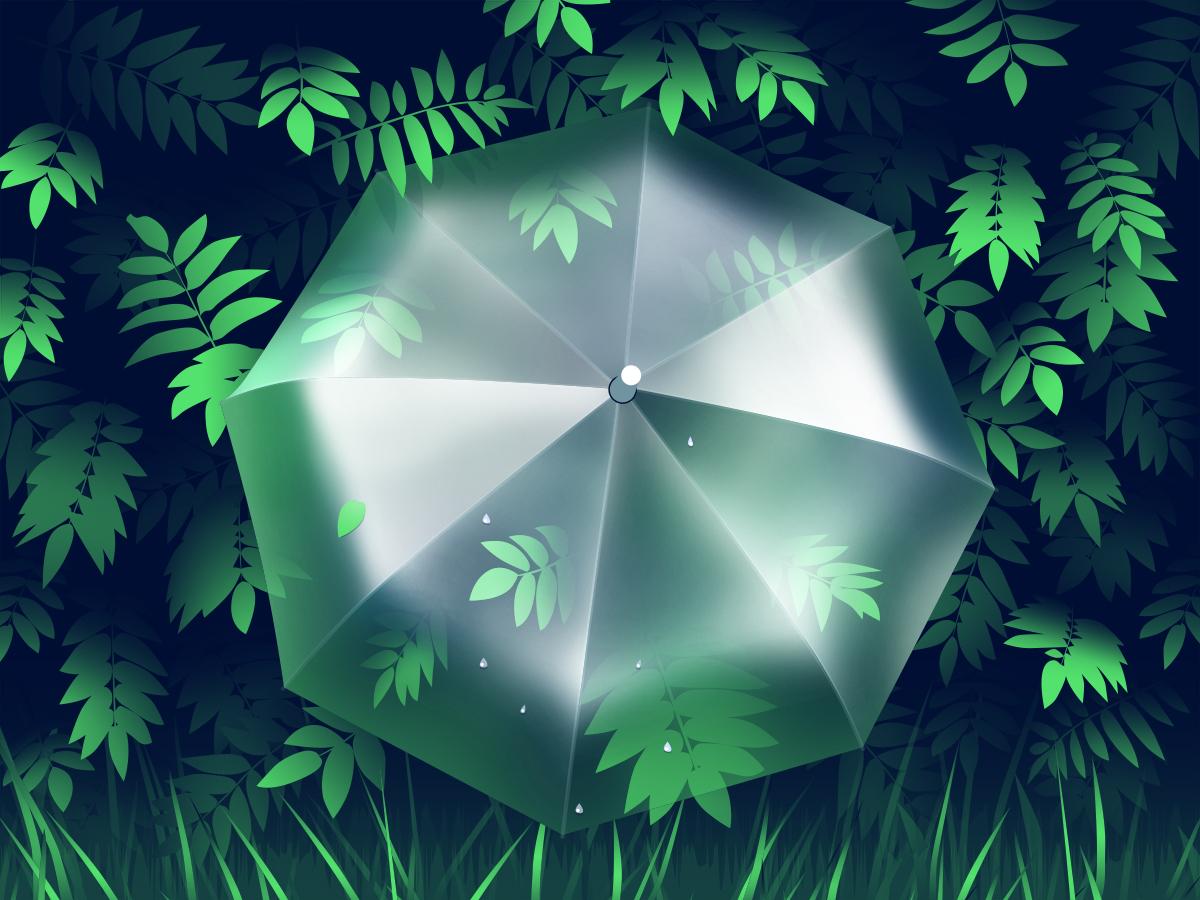 Umbrella 1200