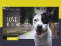 Concept - Website for an animal shelter