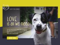 Concept - Website for an animal shelter color animal logo webdesign landingpage font logo sketch animal care website concept website love animal and pet animal animal shelter
