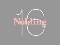 Nolding Experiment 2