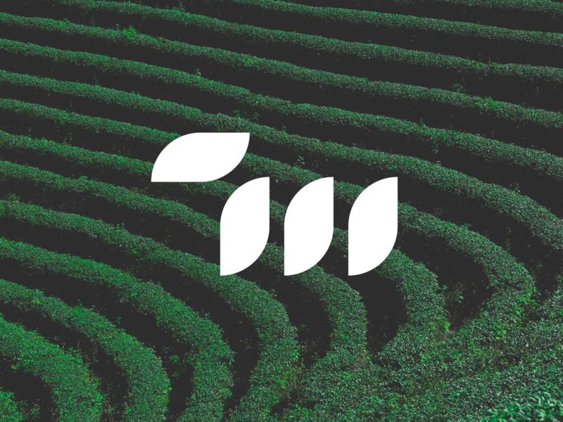 7 Matcha: symbol serif typography type lettermark clean modern minimal tea beverage matcha 7m m 7 symbol mark minimalist branding logo letspanda
