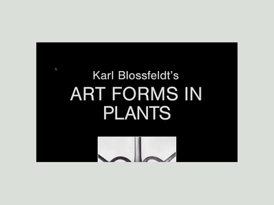 Art Forms in Plants animation kinetic type black  white black art editorial design photography editorial readymag