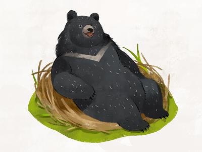 Taiwan Black Bear Illustration illustration bear taiwan