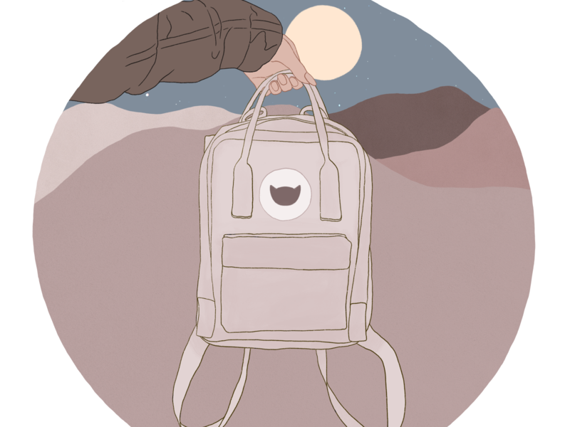 Summer Nights travel landscape backpack create cartoon branding procreate illustration advertisement art design poster flyer