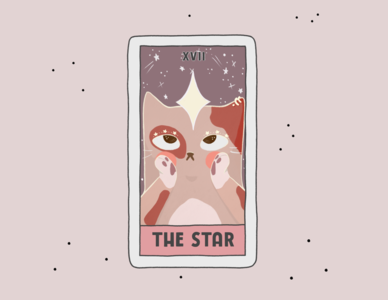 The Star witch tshirt design cards card tshirts tee tarot comic cat cartoon procreate art design poster branding illustration