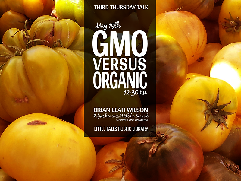 Gmo Versus Organic black yellow orange advertisement poster design flyer debut