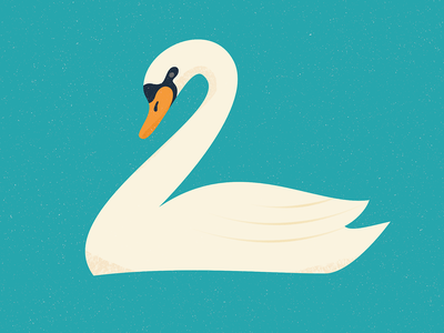 White Swan lake birds bird character design affinity designer illustration vector design