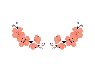 Cherry Blossoms shopify illustration floral cherry blossom