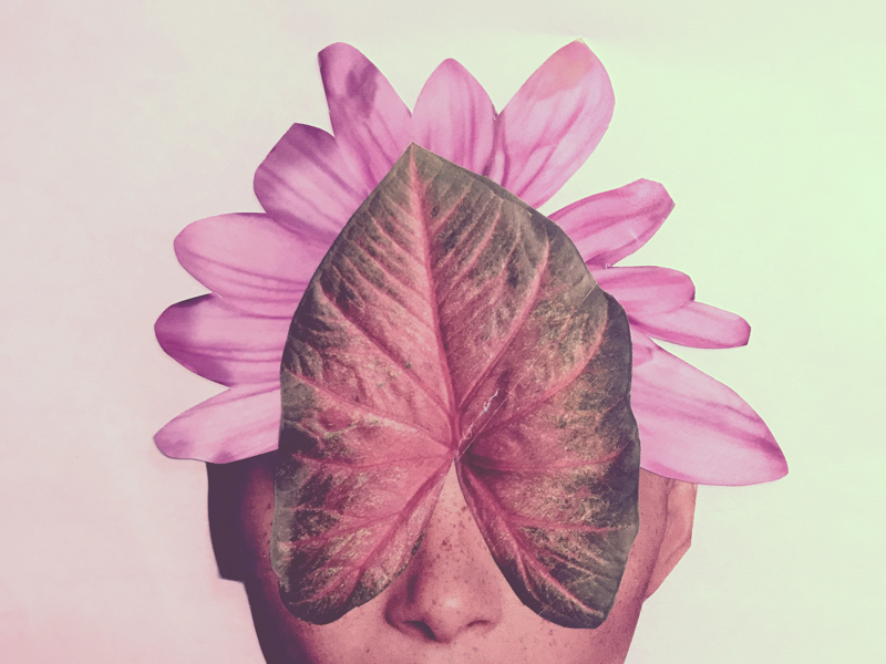 Petal pink hand-crafted graphic design gradient collage