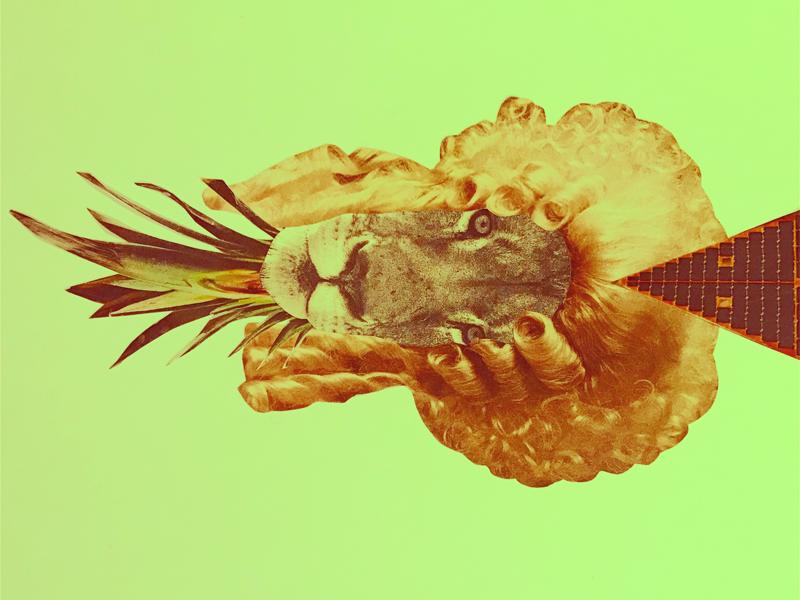 Lions graphic design handmade lion collage
