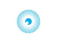 Left Eye Logo Concept