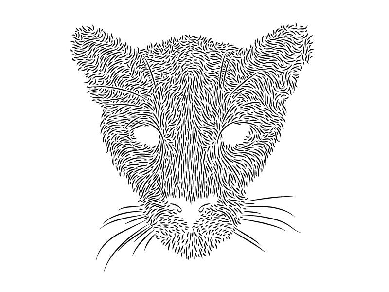 Mountain Lion animals design illustration mountain lion line black  white whiskers