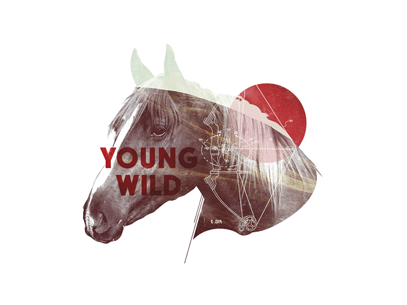 YoungWild Concept Art 03 young wild arrowhead ram deer horse animals tv show arrow bow typography photo collage hunting