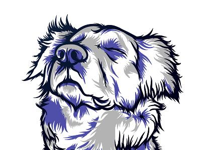 Rayo - Work in progress shadows illustration dog hair brush wacom vector