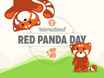 Happy Red Panda Day red panda international zoo animals endangered cute worldwide conservation fun