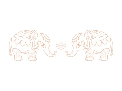Indian elephants from Jaipur