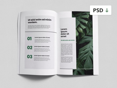 Free Topview Brochure Mockup presentation print design branding flatlay white free psd template free mockup top view blank two pages magazine pages mockup free magazine mockup freebie psd freebie free brochure mockup mockup