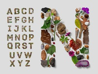 Flatlay Nature Alphabet