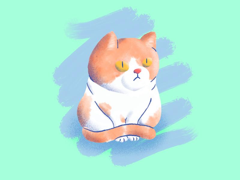 Tywin apple pencil illustration procreate cat